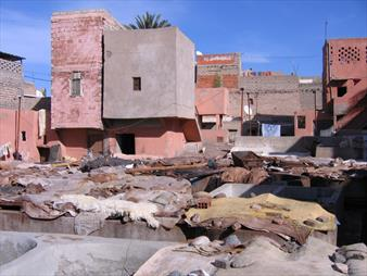 Marrakech Tanneries
