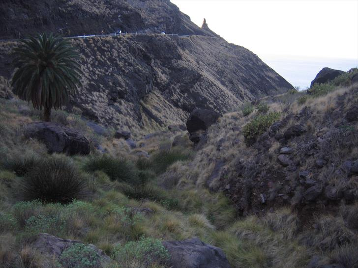 Barranco de La Palma