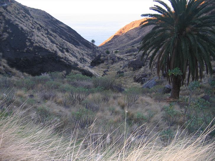 Barranco de La Palma, looking towards the coast