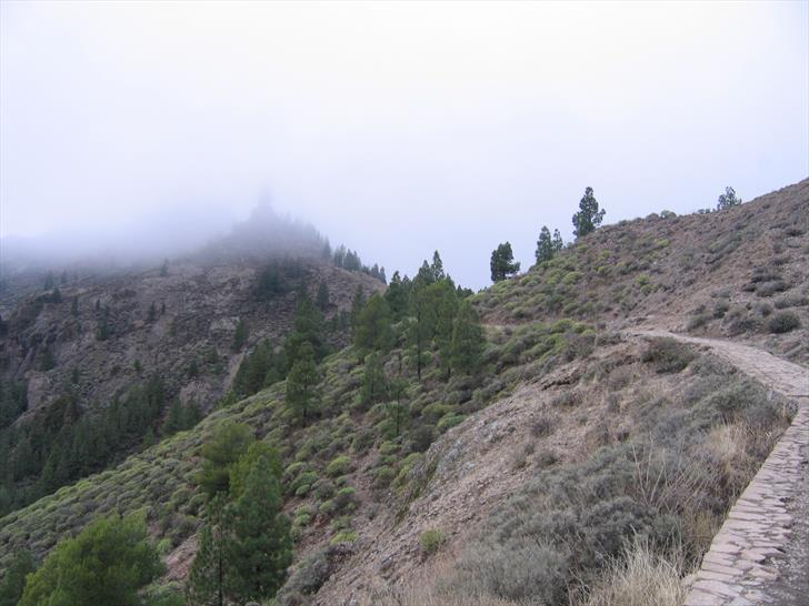 Roque Nublo trail typical terrain