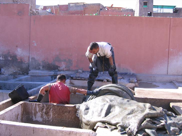 Working in a tannery in Marrakech